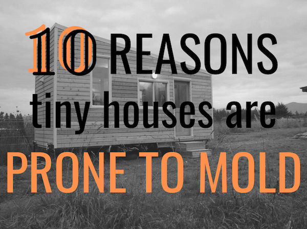 common areas that go moldy in tiny homes